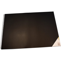 QUILL VISUAL ART DIARY A2 120 page 110 gsm